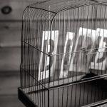 Stephen Venuti's 3 Steps To Thinking Bigger on Pricing